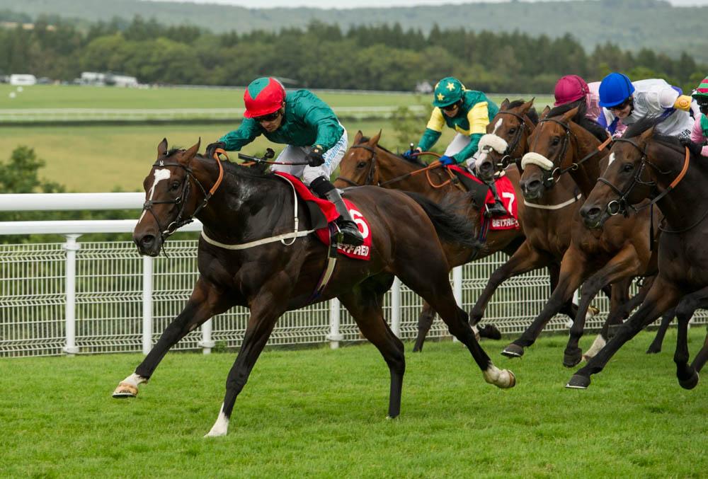 Casinoper At Yarışı Bahisleri
